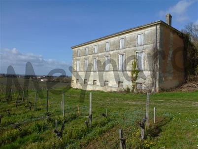 Petite propriété viticole à restaurer